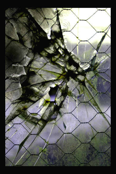 fractured_glass_wing