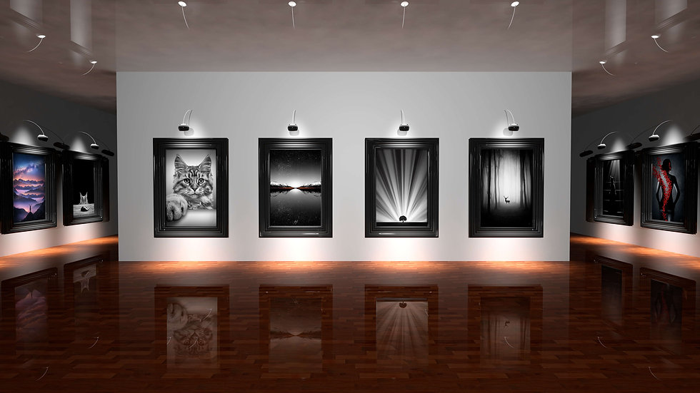 Fine Art Gallery by kathrinfederer.ch