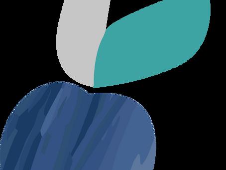 Podśliwek, czyli placek ze śliwkami
