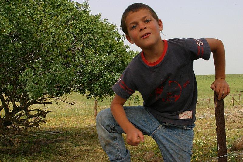 Boy on fence Arielzuk