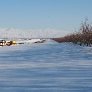 snow on Mt. Hermon Ariel Zukerman.JPG