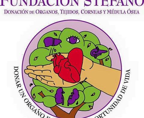 Casual Month Fundación Stefano