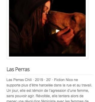 Official Selection - 22es Rencontres du cinéma sud-américain, Marseille.