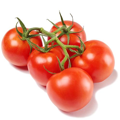 Tomato on the Vine