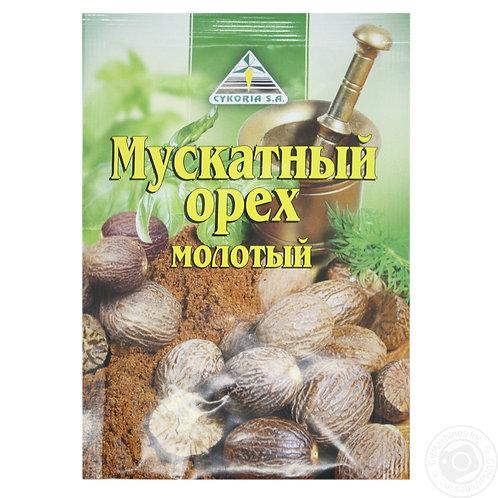 Ground Nutmeg Cykoria