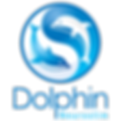 Dolphin-Neurostim-Transparent-Logo.png