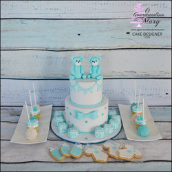 246_-_BABY_SHOWER_JUMEAUX_TWINS_-_annive