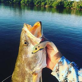 Flats fishing trout