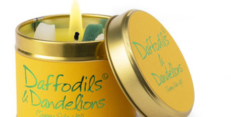 Lily flame Daffodils and Dandelions Scented Candles