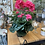 Thumbnail: Hot pink Geranium