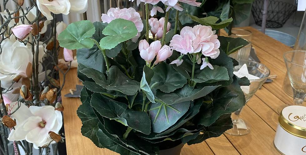 Blush faux geranium