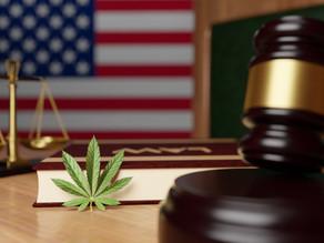 Sen. Rand Paul reintroduces legislation to remedy several hemp industry concerns
