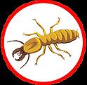 termite.png
