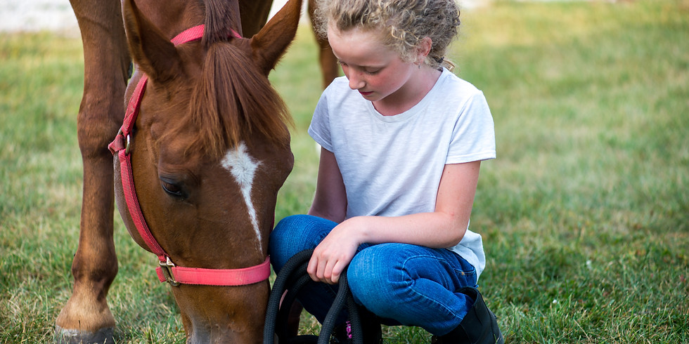 Fairytale Pony Rides at Allerton