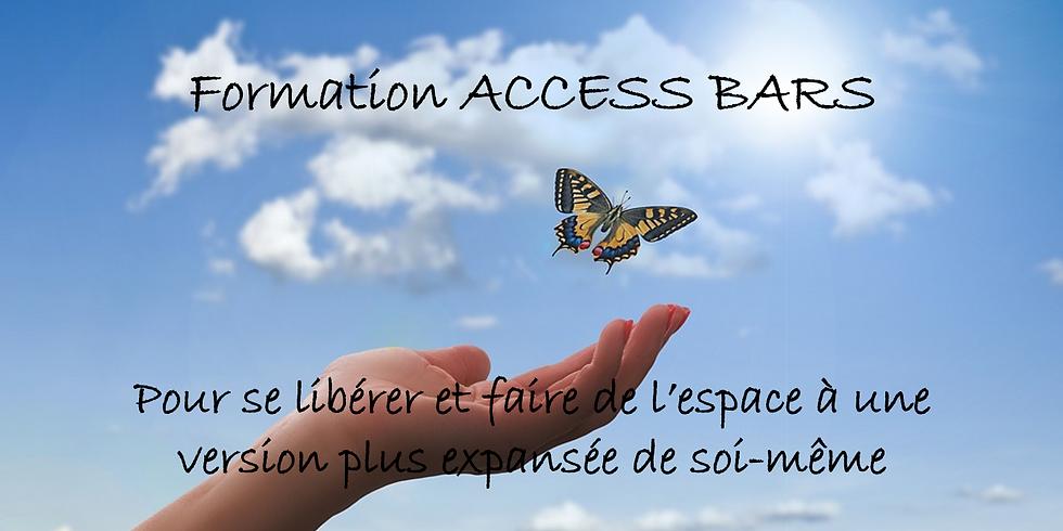 Dernière formation Access Bars