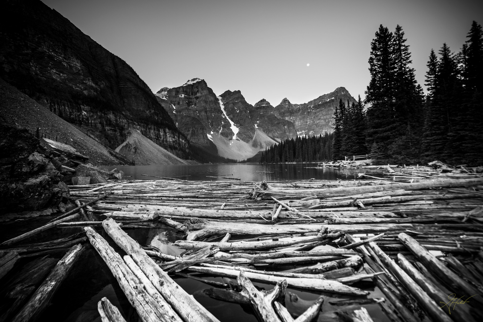 Greg Harlow Media Photography,  Banff Canada Lake Logs