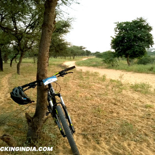 Jaipur-Outback-Cycling-Tour.jpg