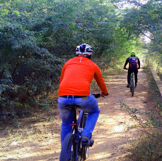 Jaipur Outback MTB Cycling