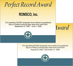 nsc-perfect-record-award3.png
