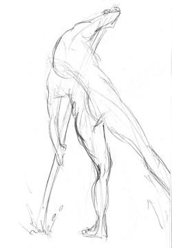 sketch002s