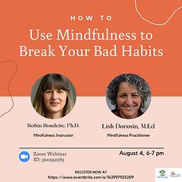 Mindfulness Webinar - Instagram Post.png