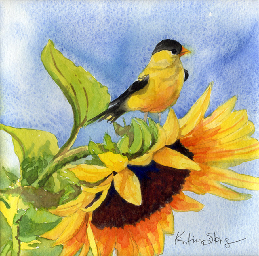 Goldfinch-Sunflower