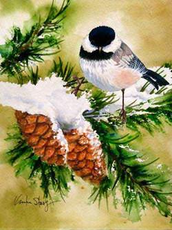 Chickadee-Winter