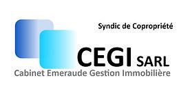 CEGI_Syndic_de_Copropriété_2.jpg