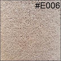E006.jpg
