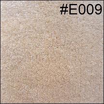 E009.jpg