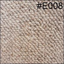 E008.jpg