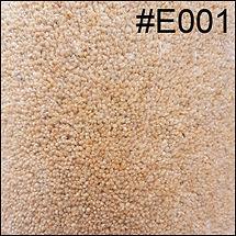 E001.jpg
