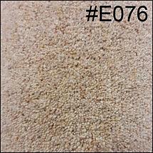 E076.jpg