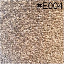 E004.jpg