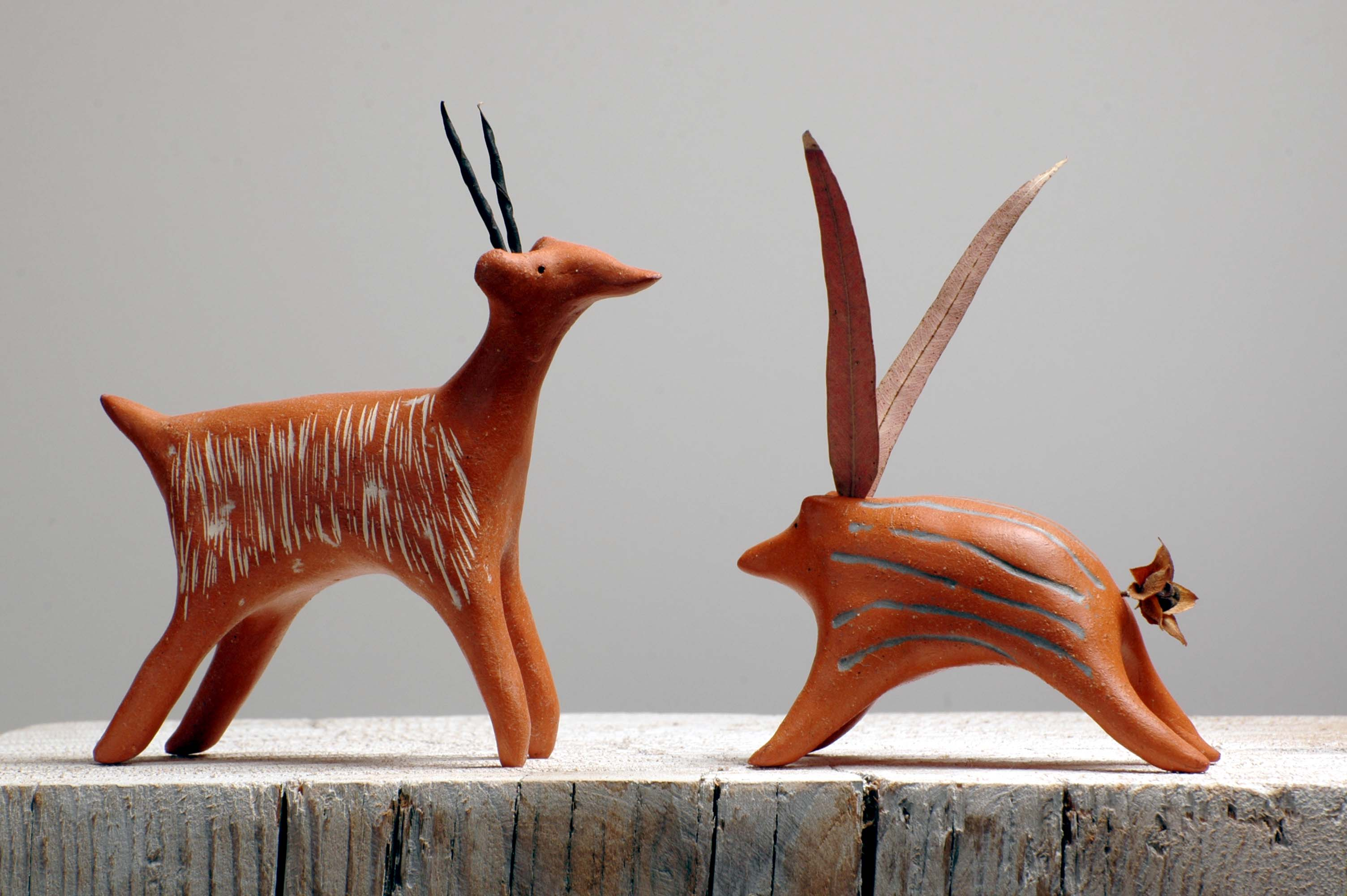 antilopes corses