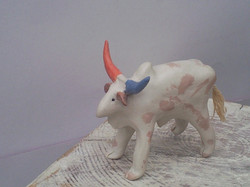vache de la région de pondichéry