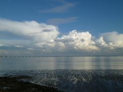 estuaire du tage