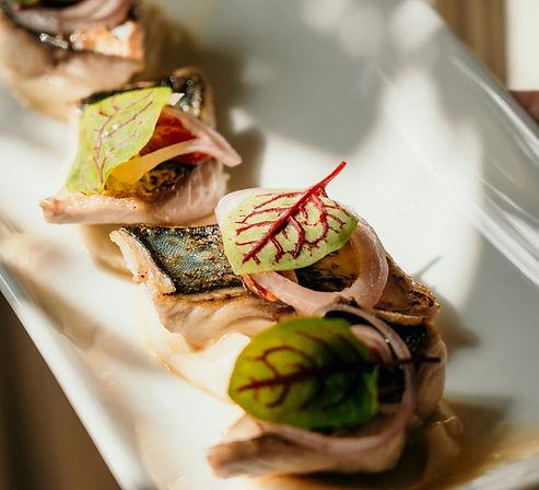 mackerel 1.jpg