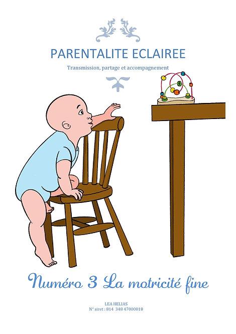 n°3 -Motricité fine