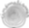 Logo_cinématismes.png