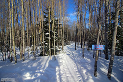 2018-02-06 15-24-18 skiwanis