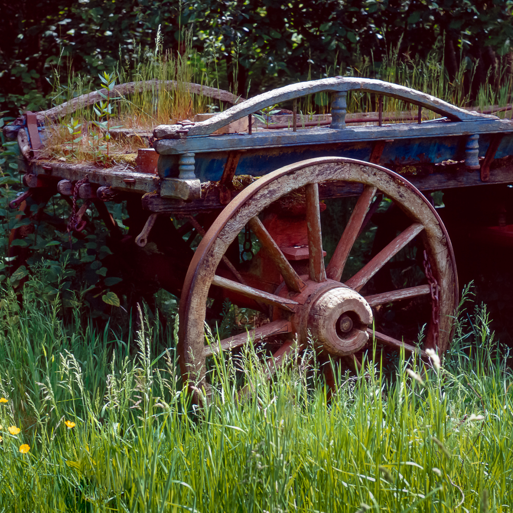 The Old Haywain