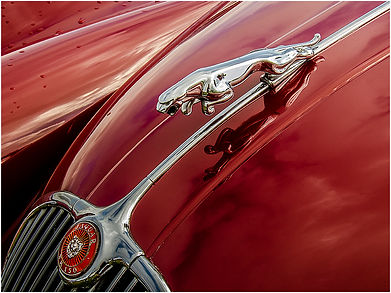03 Jaguar car mascot.jpg