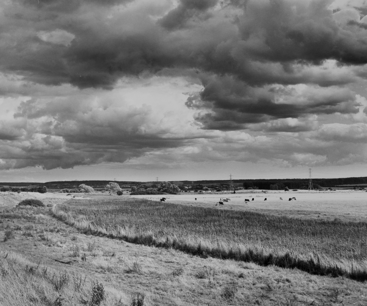 Storm Clouds Over Graveney Marsh