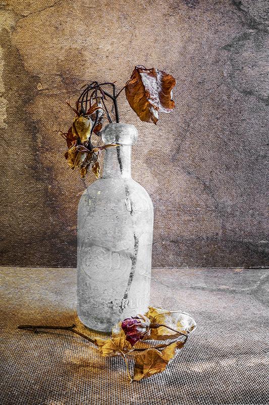 Beauty in Decay
