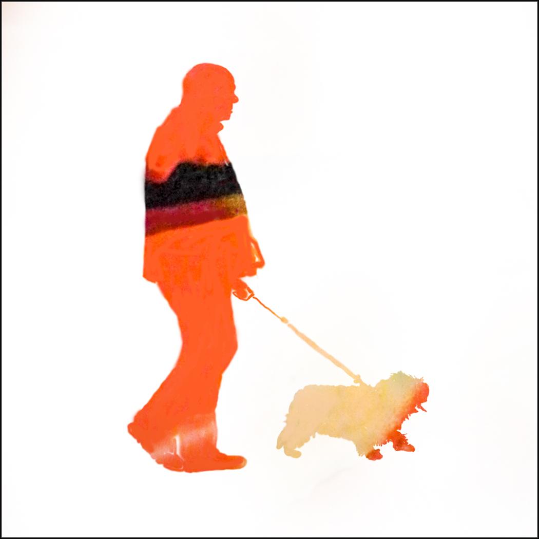 Disguise walking his dog