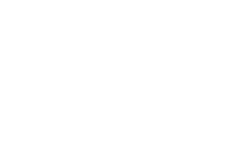 Award_Cineforom.png