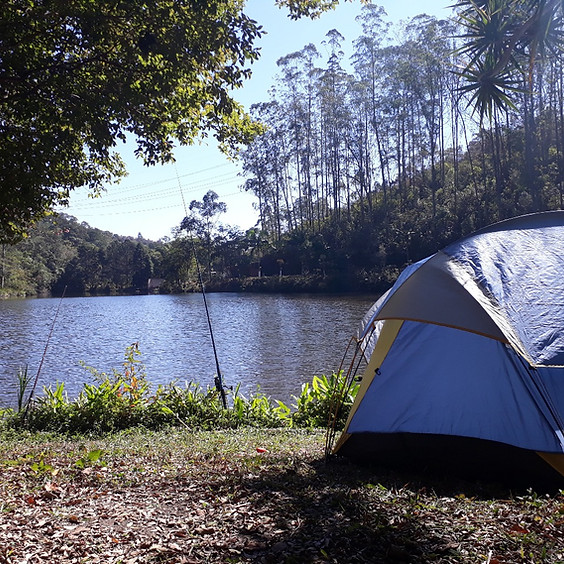 Roots Camping