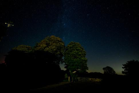 Star Gazing at Y Cartws - Just Spectacular