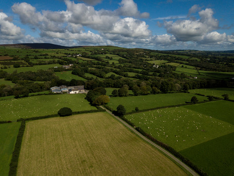 Acres of open green spaces all around our farm at Maesyfelin